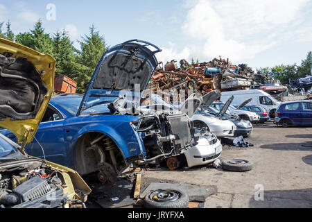 old cars being used for spare parts in a scrapyard - Stock Photo