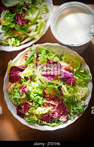Mixed leaves salad - greens with radicchio salad and grated carrot - Stock Photo
