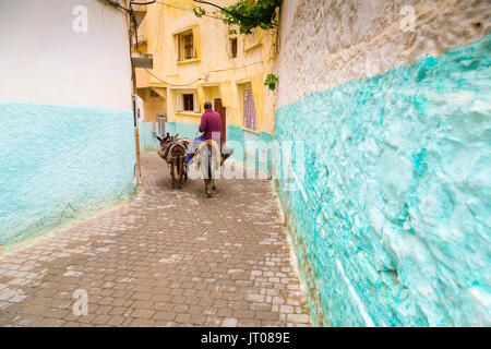 Man riding a donkey, Street life scene, Moulay Idriss. Morocco, Maghreb North Africa - Stock Photo
