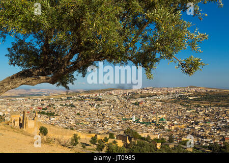 Landscape, panoramic view, Souk Medina of Fez, Fes el Bali. Morocco, Maghreb North Africa - Stock Photo