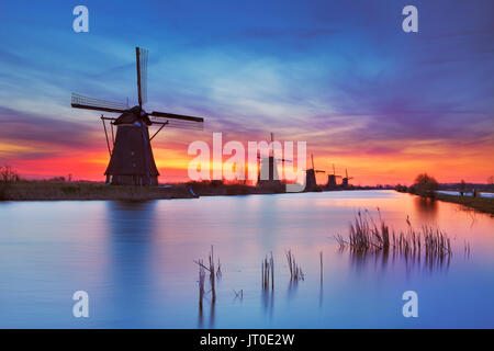 Traditional Dutch windmills with a colourful sky just before sunrise. Photographed at the famous Kinderdijk. - Stock Photo