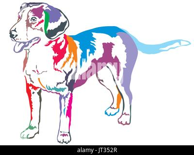 Colorful decorative portrait of standing in profile Entlebucher Mountain Dog, vector isolated illustration on white - Stock Photo