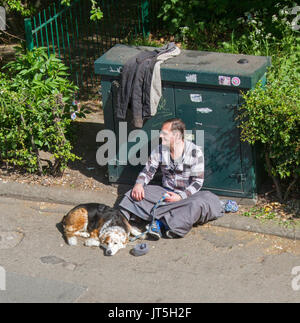 Homeless man sitting on pavement with sleeping dog in York, England - Stock Photo