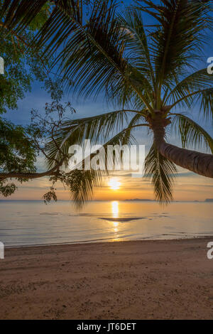 Palm tree silhouette during a colorful tropical sunset at Nathon beach, Laem Yai, Koh Samui, Thailand - Stock Photo