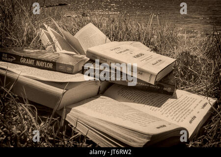 Lots of books at the beach. Costa del Sol, Málaga province. Andalusia, Southern Spain Europe - Stock Photo