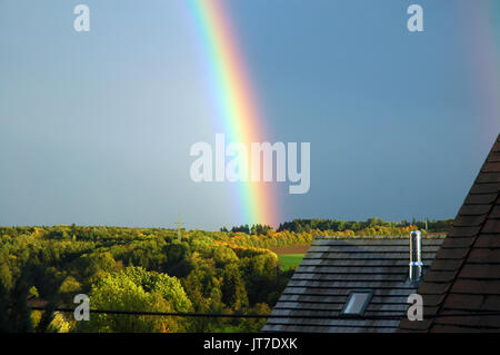 rainbow over forest landscape - Stock Photo