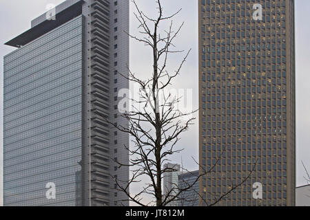 View of a tree in winter with skyscrapers in the background. İmage tries to question harmony of developments of - Stock Photo