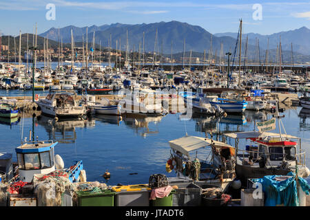 Old Port with fishing boats and yachts, view to distant mountains, Ajaccio, Island of Corsica, France, Mediterranean, - Stock Photo