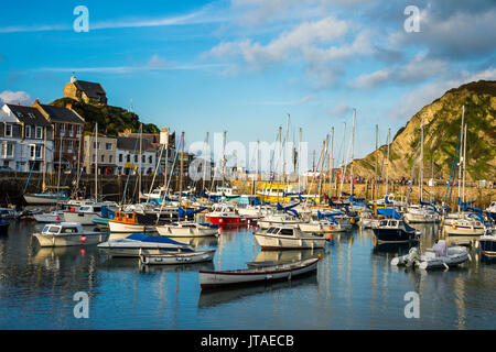 Boat harbour of Ifracombe, North Devon, England, United Kingdom, Europe - Stock Photo