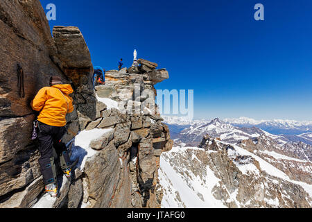 Climbers on Madonna summit 4059m, Grand Paradiso, Aosta Valley, Italian Alps, Italy, Europe - Stock Photo