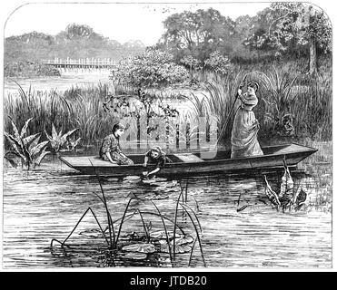 1870: Young women in a punt collecting water lilies from the River Thames near Pangbourne, a large village, Berkshire, - Stock Photo