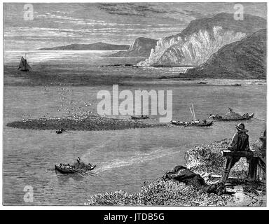 1870: Watching small fishing boats catching and bringing in pilchards off the Lizard, a peninsula in southern Cornwall, - Stock Photo