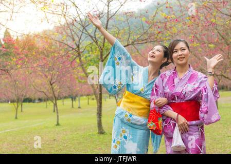 sweet smiling women wearing traditional kimono clothing display showing gesture enjoying cherry blossom flower trees - Stock Photo