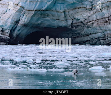 Melt water cave, Margerie glacier - Stock Photo