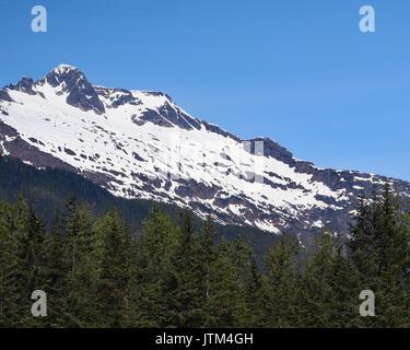 Mountain view through pine trees - Stock Photo