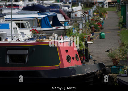 Lee Valley Marina, Springfield Park, Stamford Hill E5 London houseboats moored close together - Stock Photo