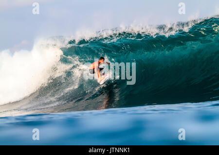 Surfer surfing on wave, Lakey Peak, Central Sumbawa, Indonesia