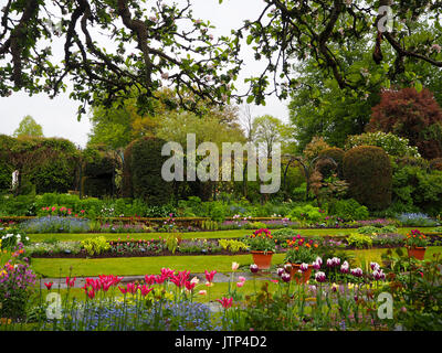 Landscape view from the apple blossom towards the sunken garden at Chenies Manor, Buckinghamshire; wet Spring day - Stock Photo