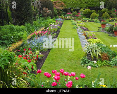 Chenies Manor garden at tulip time. Grass paths round the sunken garden with colourful tulips and ornamental pond.Tulips - Stock Photo