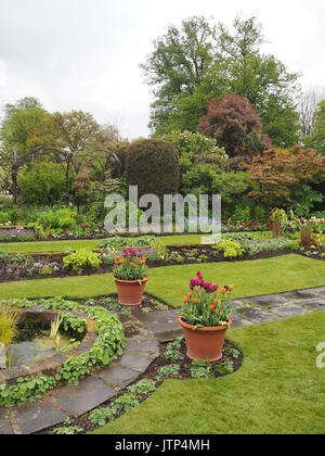 Portrait view of Chenies Manor sunken garden looking south west in springtime with tulips, ornamental pond, archways, - Stock Photo