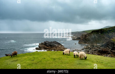 Achill head in county Mayo on the west coast of Ireland - Stock Photo