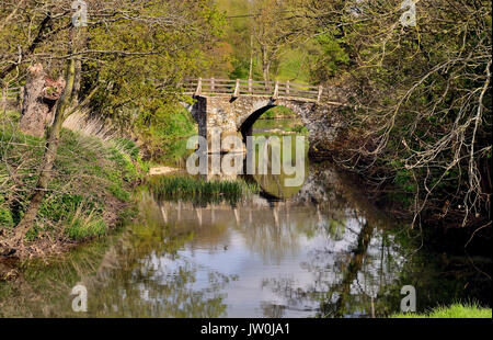 The packhorse bridge over the river Frome at Tellisford spans the county boundary between Wiltshire and Somerset. - Stock Photo
