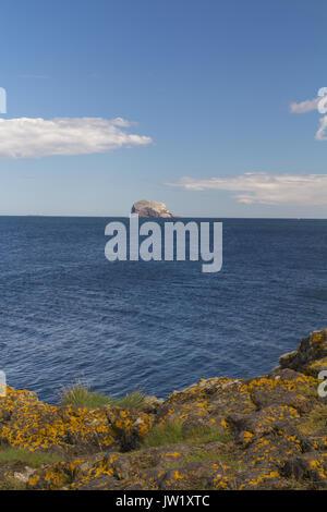 Bass Rock From North Berwick - Stock Photo