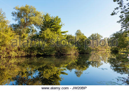Toronto Islands Park lagoon trees reflected Toronto Ontario Canada - Stock Photo