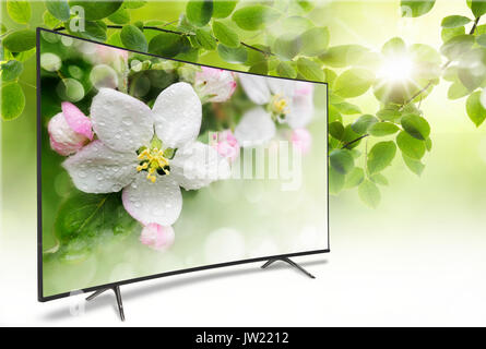 4k monitor isolated on white. Isometric view.  TV panoramic on the background of a spring-like view of green foliage - Stock Photo