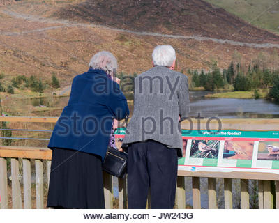 Couple of mature people looking at the pond in Bwlch nant yr Arian Ponterwyd, Aberystwyth in the Cambrian Mountains - Stock Photo
