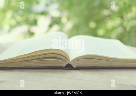 Blurred image of the open book in front of an open window with green trees. The concept of education and knowledge. - Stock Photo