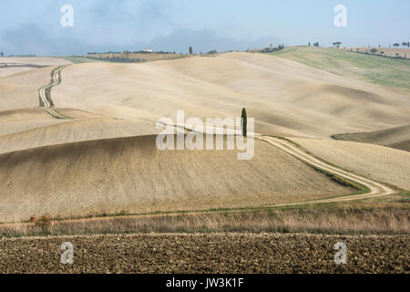 Italy, Tuscany, San Quirico D'orcia, Long twisting rural road leading through endless fields and lonely cypress - Stock Photo