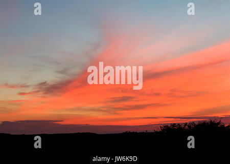Pink and orange clouds across sky in East Sussex, England. - Stock Photo