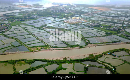 Qinzhou. 10th Aug, 2017. Photo taken on Aug. 10, 2017 shows a general view of shrimp ponds along the Qin River in - Stock Photo