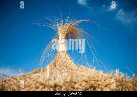 Close-up of a Starw Parasol - Stock Photo