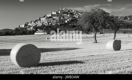 Black and white view of Trevi in Umbria (Italy) during summer with hay bales. Landscape format. - Stock Photo