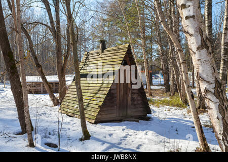 Old wooden hut (toilet) in the village - Stock Photo