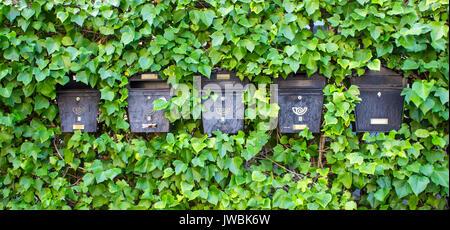 Mailboxes. Green plant wall. Salamanca city, Spain. - Stock Photo
