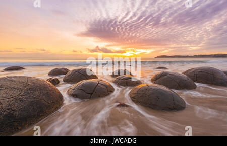 Moeraki boulders, at sunrise, geological formation, Koekohe Beach, Moeraki, East Coast, Otago, South Island, New - Stock Photo