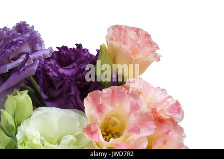 Bouquet of white, pink and purple eustoma  flowers  isolated on white background - Stock Photo
