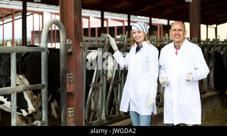 Cheerful farm employees standing near milking herd in barn and smiling - Stock Photo