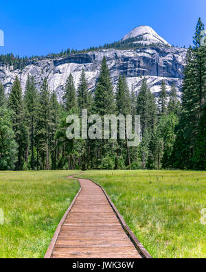 Wooden stepping path in the meadows of Yosemite. This path carries you over the meadow where there is a lot of stagnant - Stock Photo