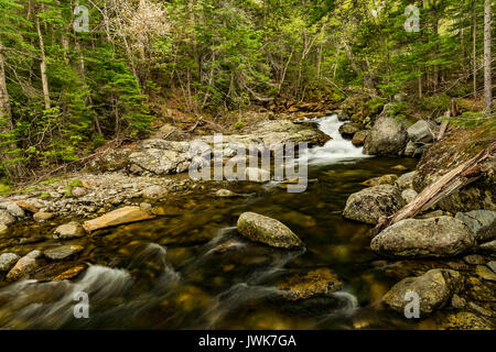 Spring rapids on the Ellis River near Tuckerman Ravine Trail, Coos Co., Pinkham Notch, White Mountain National Forest, - Stock Photo