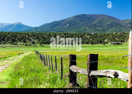 Pasture, barbed wire fence & Methodist Mountain; Vandaveer Ranch; Salida; Colorado; USA - Stock Photo