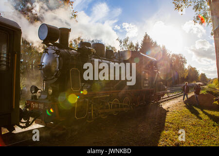 GULBENE, LATVIA - OCTOBER 15, 2016: Old retro steam locomotive of black color on local narrow gauge railway station. - Stock Photo
