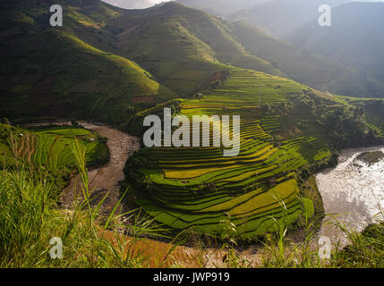 Mountain scenery with terraced rice fields in Lao Cai, Northern Vietnam. Rice production in Vietnam in the Mekong - Stock Photo