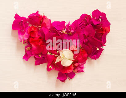 Heart from bright pink flowers - Stock Photo