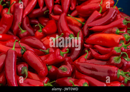 A table is filled with red chilli peppers for sale at a market in Istanbul - Stock Photo