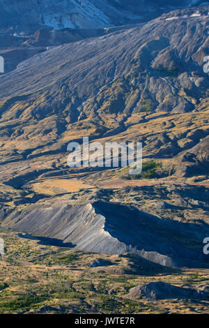 Toutle River valley, Spirit Lake Memorial Highway, Mt St Helens National Volcanic Monument, Washington - Stock Photo
