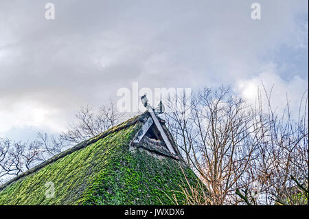 Giebel eines Niedersachsenhauses; gable of a farmhouse in lower saxony - Stock Photo